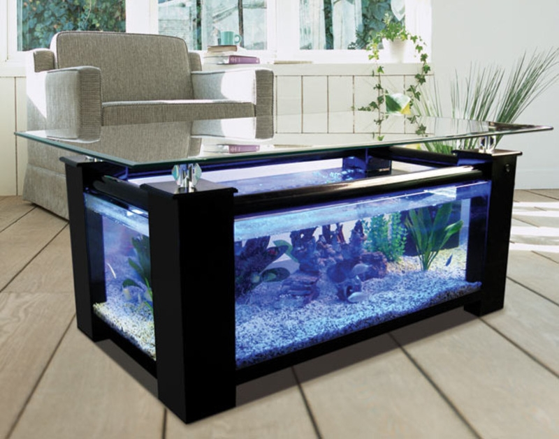 coffee table aquarium, coffe table design, aquarium, table