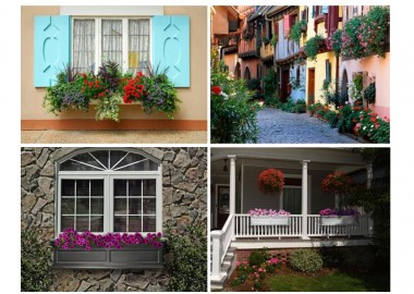 Window-Flower-Boxes-Collection
