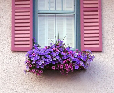 ba3d_Bright-Window-Flower-Box