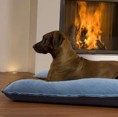 dog-furniture