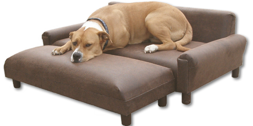 Comfortable place for your furry friend dog furniture ideas for Big dog furniture