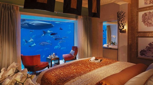1  Image Source  Hotel Pictures. Substantial Home Decor With Bedroom Aquariums