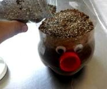3. Fill the bottle with soil