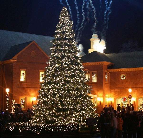 via mumu design - Outside Christmas Tree
