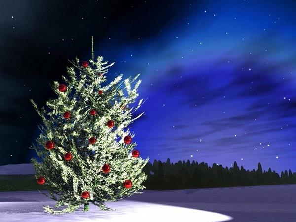 Put Up Outdoor Christmas Lights