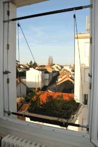 Window Shutter Garden