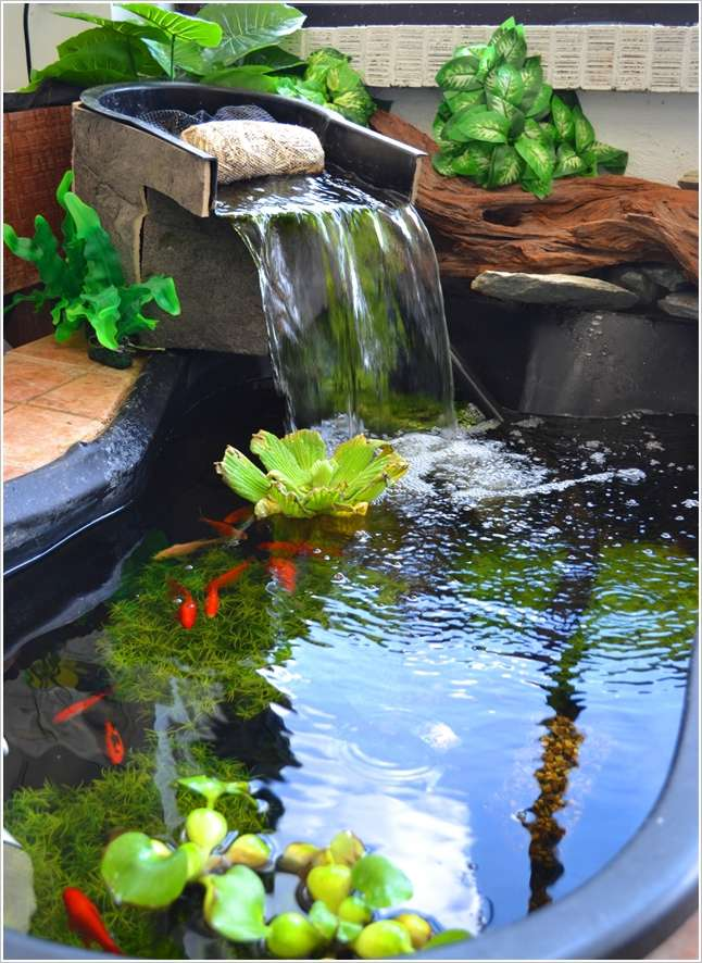 5 outdoor aquarium designs that will bring life to your for Outdoor fish tank