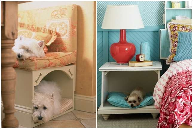 5 spaces that your pets will be happy to have - Pets for small spaces style ...
