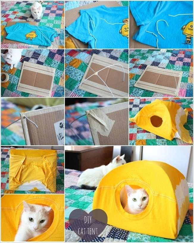 make a no sew cat tent with an old t shirt and wire hangers