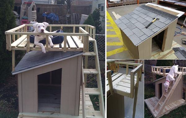 10 Creative Dog House Design Ideas