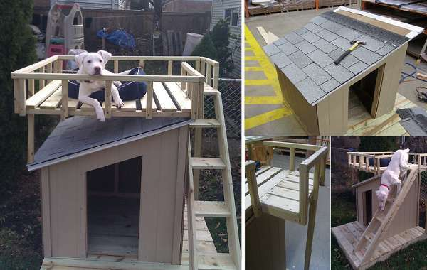 10 Creative Dog House Design Ideas