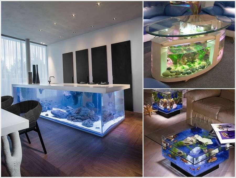 Kitchen Island Fish Tank 10 awe-inspiring ideas to decorate your home with aquariums
