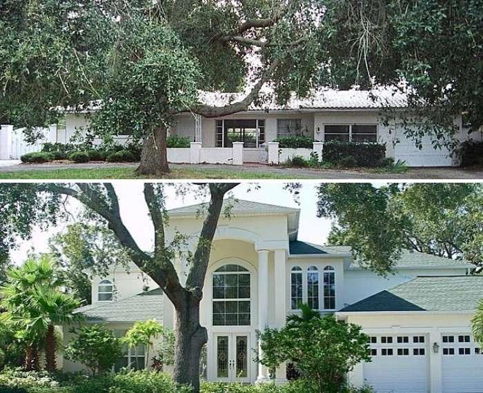 Clutter Tree House Transformed into Beautiful Lush Vila