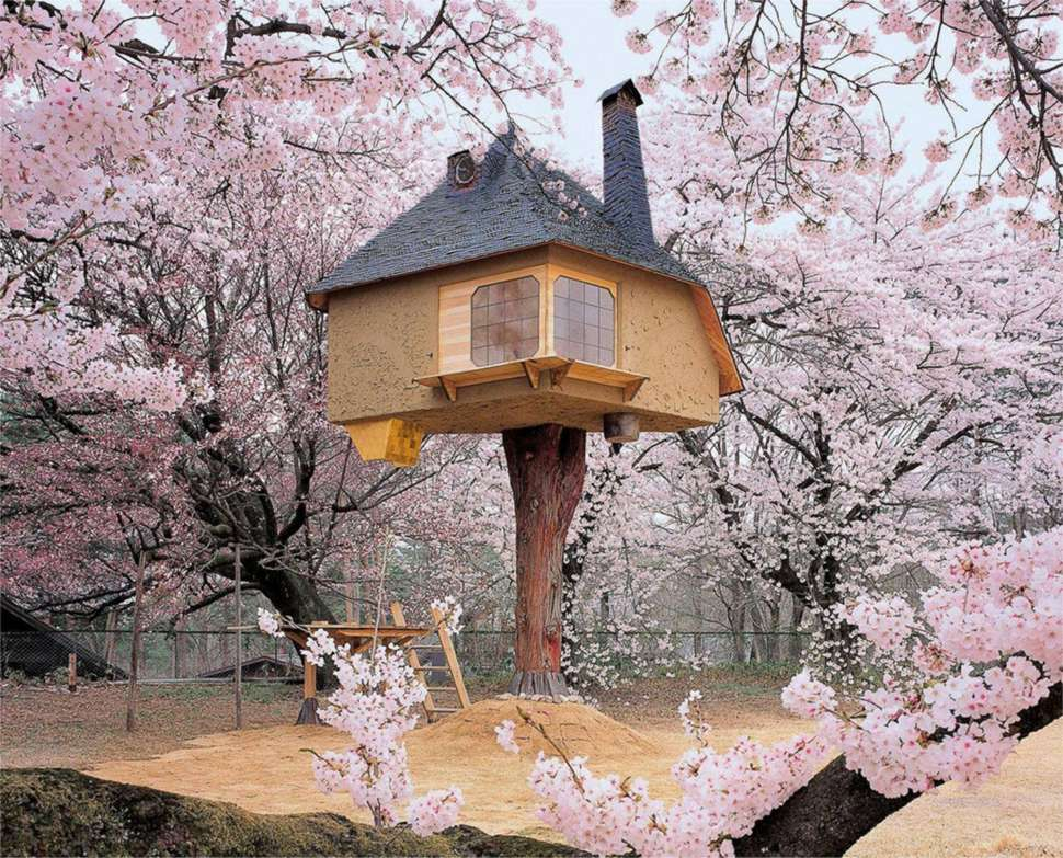 17 amazing micro house ideas to inspire for Amazing houses inside