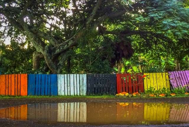 Colorful Plaet Fence