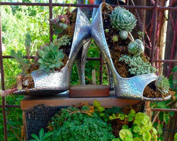 Old Shoes Planters