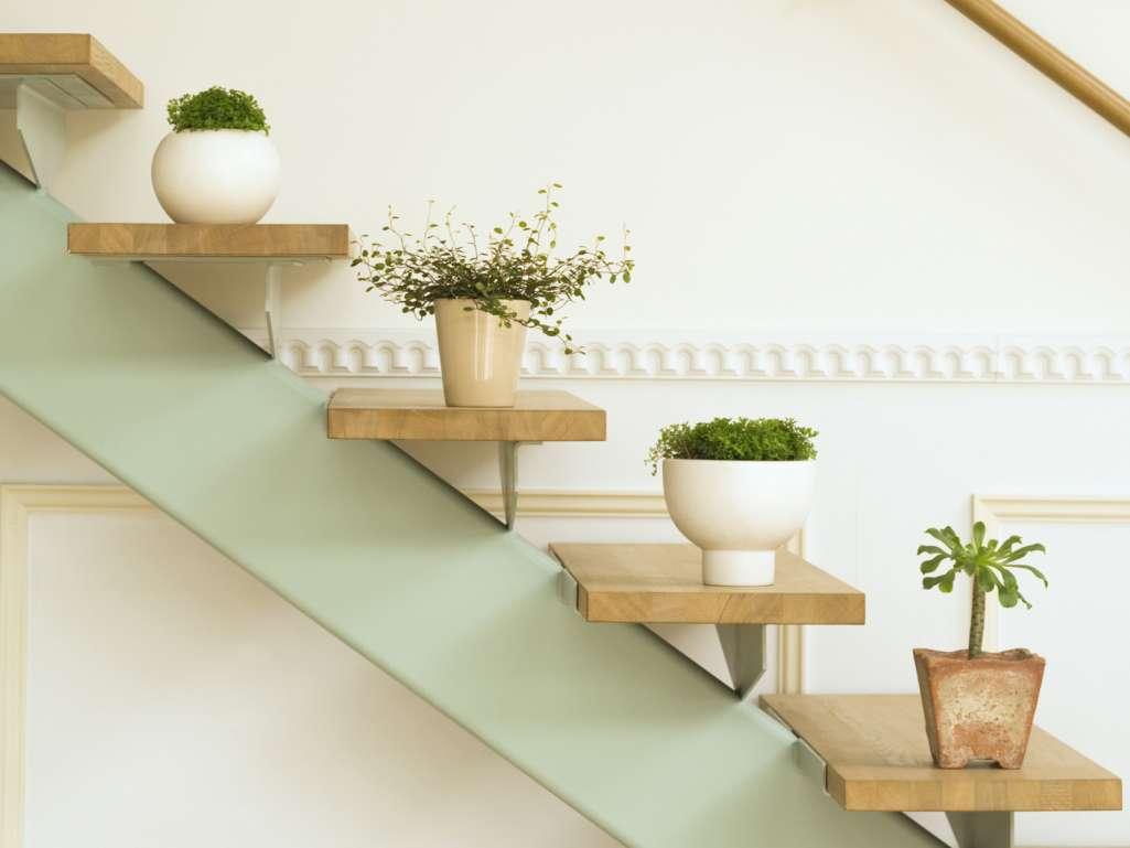Staircase Herb Garden