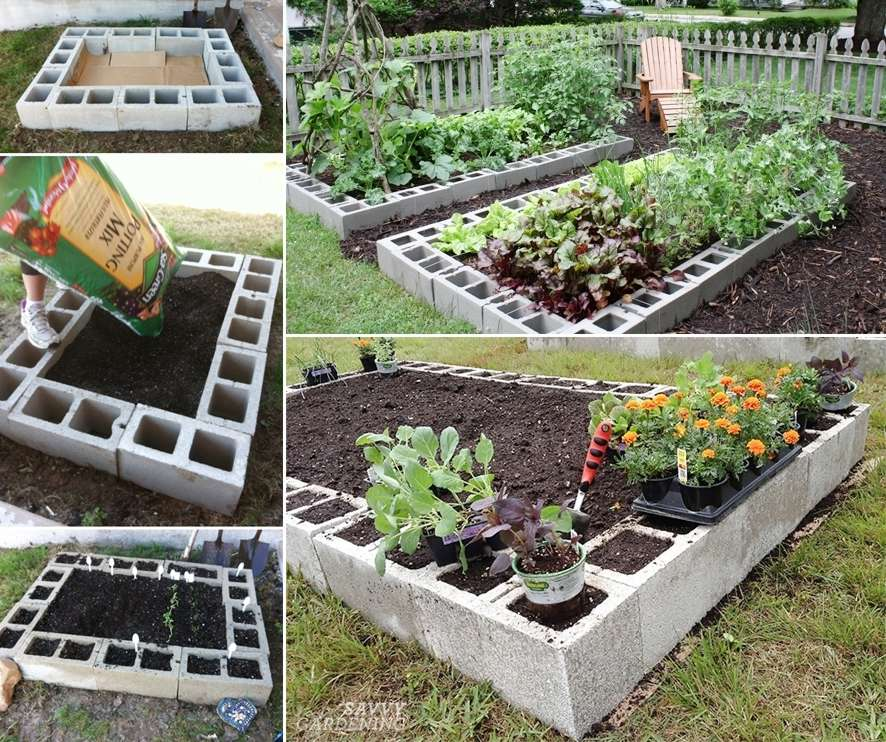 These Cinder Block Raised Garden Beds Are Just Fabulous