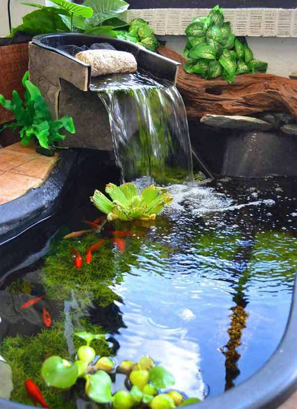 Fancy Fish Tanks 15 awesome small backyard aquarium diy ideas