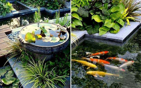 15 awesome small backyard aquarium diy ideas for Backyard koi pond designs