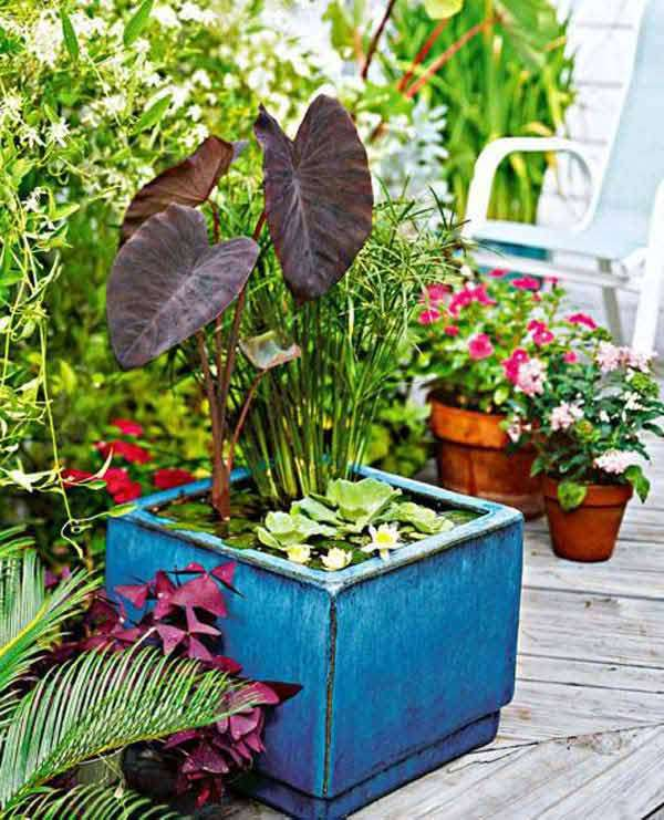 15 budget friendly diy mini ponds in a pot for Square pond ideas