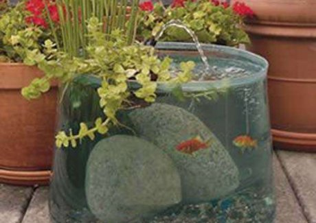Pop Up Aquarium