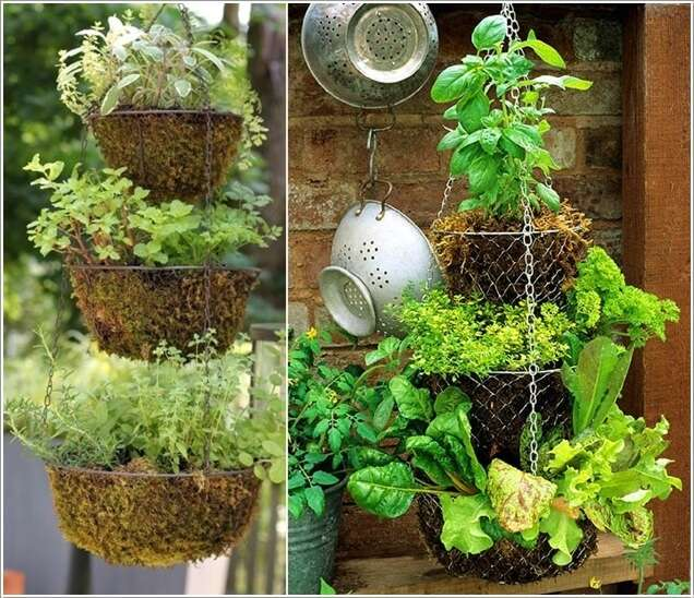 2  15 Unique Kitchen Gardens That Your Home Deserves 224