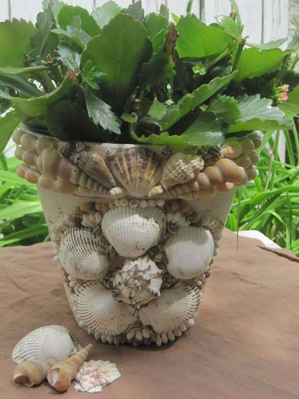 Seashell encrusted clay pot