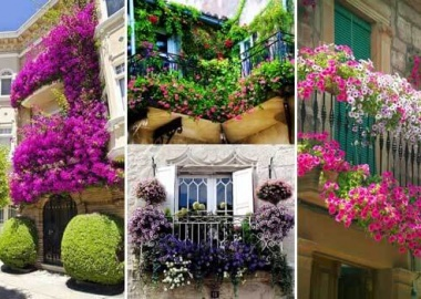 Spectacular-Balcony-Garden-Woohome-0