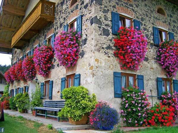 Spectacular-Balcony-Garden-Woohome-10