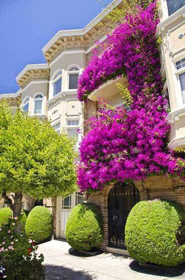 Spectacular-Balcony-Garden-Woohome-14