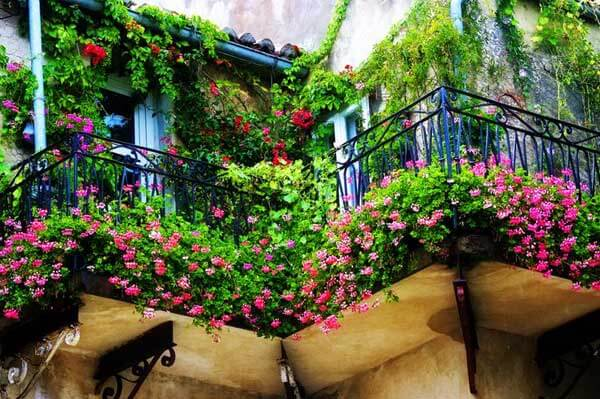 Spectacular Balcony Garden Woohome 2