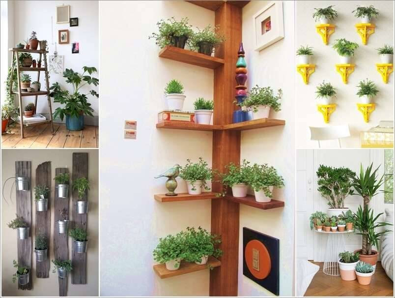 15 amazing ideas to display your indoor plants for Indoor greenery ideas