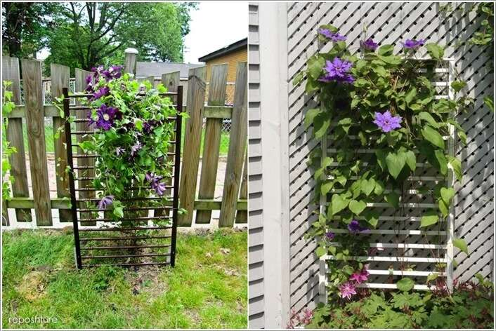 Unique Trellis Ideas Part - 29: Amazing Interior Design