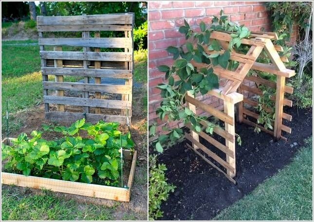 Unique Trellis Designs Related Keywords Suggestions