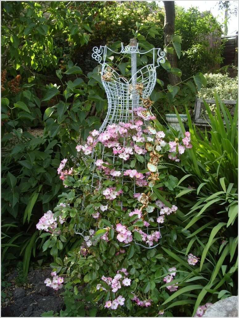 unusual trellis ideas
