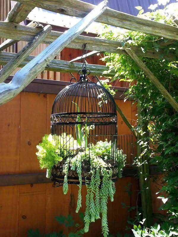 Birdcages planter