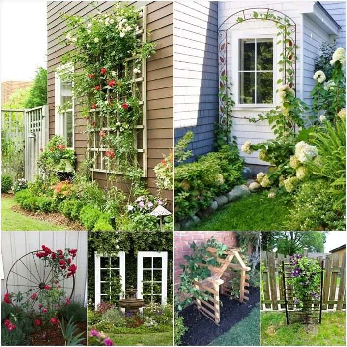 15 unique trellis ideas for your home 39 s garden for Wall trellis ideas