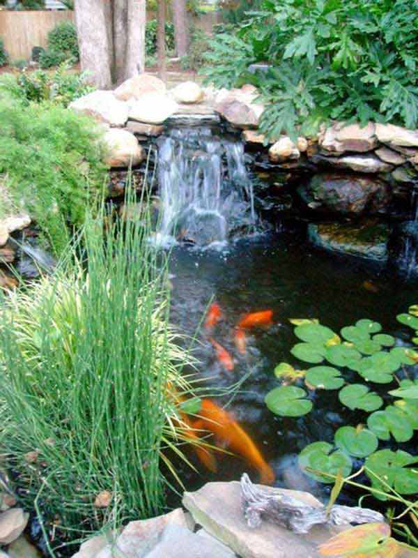 16 impressive diy backyard ponds ideas for Backyard koi fish pond