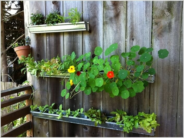 13 cool long planter ideas for keen gardeners for Rain gutter planter box