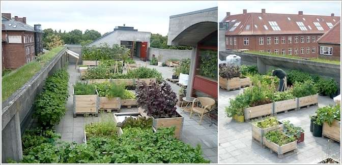 2  15 Stylish Raised Bed Ideas for No Grass Outdoor Areas 230