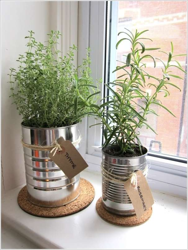 3  10 Incredible Indoor Plant Container Ideas 328