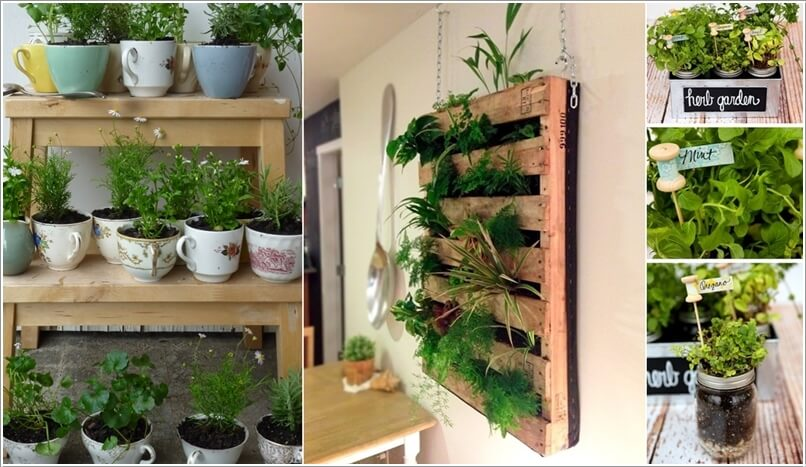 Indoor Herb Garden Ideas Beauteous 10 Cool Diy Ideas To Grow An Indoor Herb Garden 2017