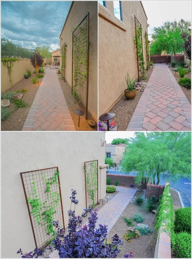 Decorate and Liven Up The Wall of Your Side Yard 4