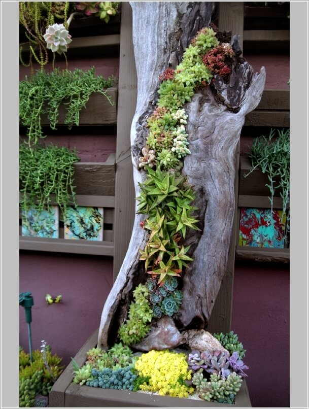 Materials to Use for a Vertical Garden 10