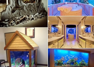 These Crazy Home Aquariums Will Take Your Breath Away fi