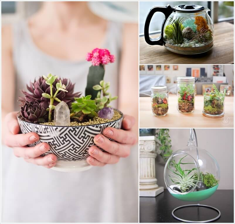 20 Cool Ideas to Make Your Own Terrarium 1