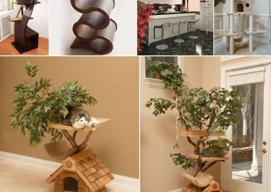 Cool Cat Tree Furniture Designs Your Cat Will Love fi