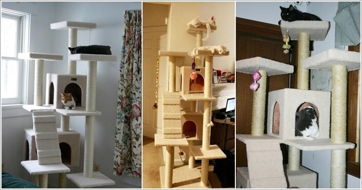 Cool Cat Tree Furniture Designs Your Cat Will Love 7
