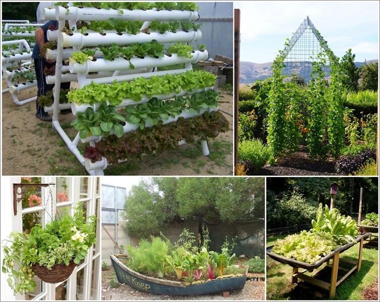 Nice Unique Vegetable Garden Ideas Part - 7: Amazing Interior Design